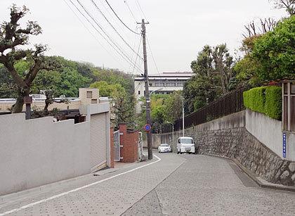 ikegami05.jpg